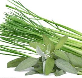 Sage and lemongrass BB902