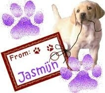 Jasmine Bestseller