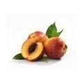 Perzikpitolie INCI:Prunus persica va 100ml koud geperst