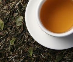White tea hypo allergeen