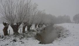 Snowing  va 10ml