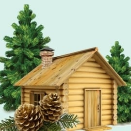 Balsam en Cedar bestseller