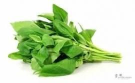 Basilicumolie INCI: Ocimum Basilicum 100% natuurlijk