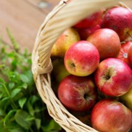 Apple Sage BB1403