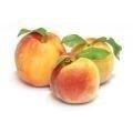 Abrikozenpitolie INCI:Prunus Armeniaca   v.a. 100ml geraffineerd