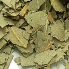 Eucalyptusblad va 50gr / Eucalyptus globulus