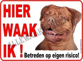 Bordeau Dog  (2) 112