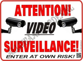 VIDEO SURVEILLANCE 270