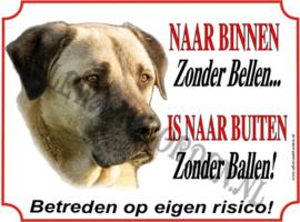 Turkse Herder of Anatolische Herder 245 AK BAL