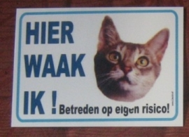 POES 199