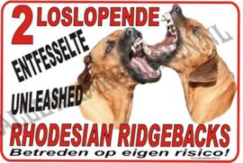 RHODESIAN RIDGEBACK 177 B