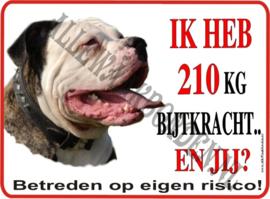 Amerikaanse Bulldog 103 B 2