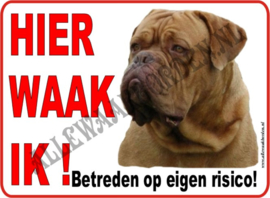 Bordeau Dog  (3) 112