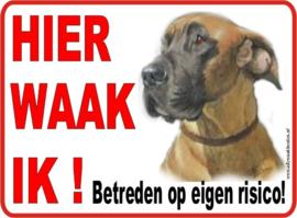Duitse of Deense Dog nr. 205 Licht bruin