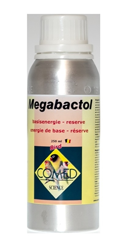 82166 Megabactol 250 ml Basisenergie - reserve