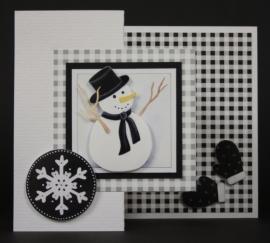 z/w sneeuwpop
