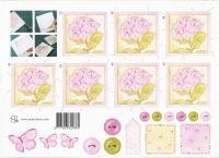 knipvel: roze hortensia