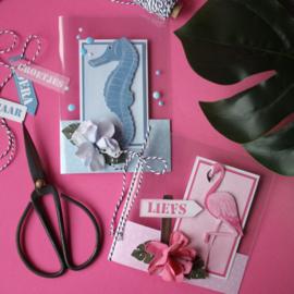 Materialenpakket KreaDoe: transparante kaarten