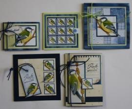 Voorbeeld kaarten koolmezen