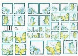 knipvel: turkooizen vlinder