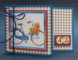 Voorbeeld kaart auto en fiets
