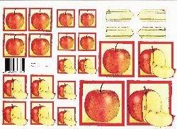 knipvel: appels