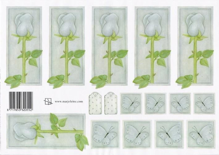 grijze roos