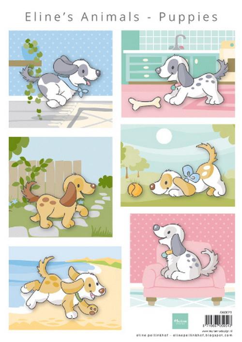 knipvel Eline's animals puppies AK0079
