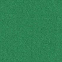 scrapkarton donkergroen (916) voorheen 16 donkergroen