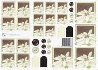 Witte kerstroos 0866