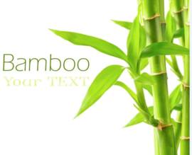 Bamboe thee
