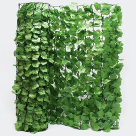 Privacy-Scherm, Klim-op Look, 300x100 cm, muurafdekking.