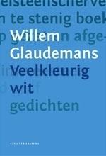 Veelkleurig wit - Willem Glaudemans