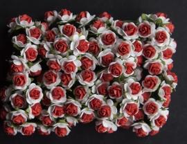 Roosjes X wit/rood