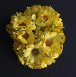 Chrysant Geel
