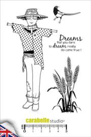The scarecrow SA60256E  A6