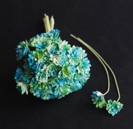 Gipskruid turquoise/groen