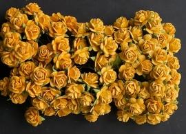 Roos S oranje