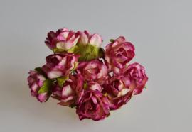 wilde roos paars/ivoor 2,5 cm 5 stuks