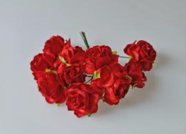 Wild  Rose Red 5 pc 2,5 cm