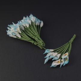 Calla lilie licht blauw/wit