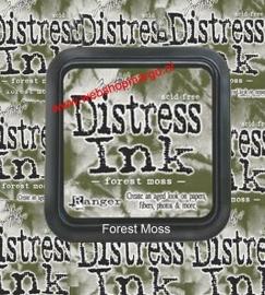 Forest Moss TIM27133