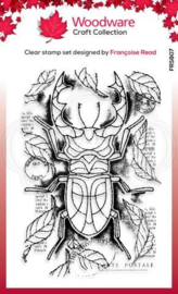 Woodware Francoise Read Stag Beetle 4 in x 6 in Clear Stamp