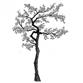 Cherry Blossom Tree LAV015