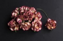 Wilde roos tweekleurig bruin 2,5 cm 5 stuks