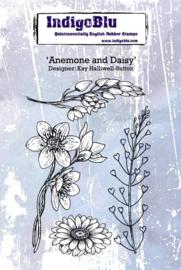 IndigoBlu Anemone and Daisy A6 (IND0371)