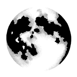 Moon LAV431