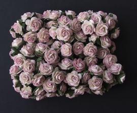 Roos K roze-ivoor