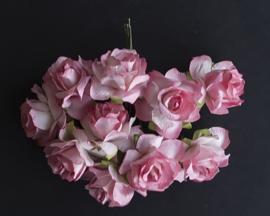 Wilde roos roze/wit 2,5 cm 5 stuks