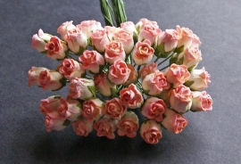 Hiproos  ivoor/roze